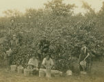 Idylwilde Orchard peach picking, Vischer Ferry, NY, c. 1905