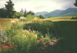 AuSable Club gardens, 1995 (postcard) (AuSable Club Album)
