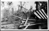 Post Card: Long Branch After Tornado