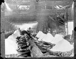 Mr. Beagle working in salt block in Geddes