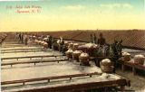 Colorized Post Card: 310 Solar Salt Works, Syracuse, N.Y.