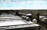 Colorized Post Card: At Work in the Salt Yards, Syracuse