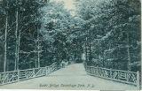 Rustic Bridge, Sacandaga Park, NY