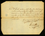 [Birth certificate of Stephen, a male negro infant]