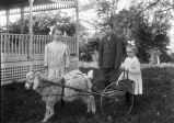 Galusha children with goat and cart