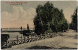 Shore Road, Manhasset Bay, Great Neck, N.Y.