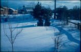 Linda Braner's  and other's backyards in the  snow, 1960
