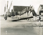 [Woodcleft Canal -February 1938 Ice Storm""