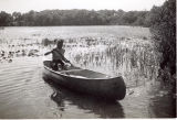 [Woman in canoe in marshes]