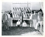 [Fish on display racks]