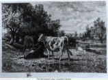 """Untitled (Cattle by a Stream)"" by Peter Moran, c.1885"