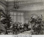 [Interior of Conservatory at Idle Hour]