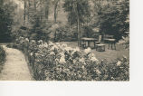 A Portion of the Peony Beds and Pomander Walk, Stage Coach Inn; Locust Valley, Long Island, N.Y.