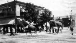 Circus Parade, Hempstead (Village) N.Y.