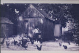 [Chicken Coops at the Davis House Farm]
