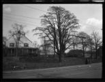 Flushing: unidentified house, large leafless tree, undated. Woman and child [waiting for trolley?]...