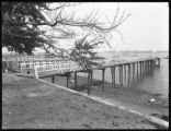 Dock and bulkhead for Ratsey & Lapthorne, City Island, Bronx, September 19, 1916. Photographed...