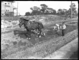 Men using a team of horses to plow up a roadbed, Kearny (?), N.J., October 2, 1918. Photographed...