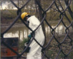 Remediation workers remove barrels of toxic waste from creek in fenced-in area at Love Canal