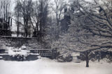 April snow in the TCC formal gardens
