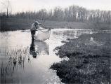 Chittenango Creek 1928