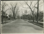 Residential Albany, New York, Allen Street North from Morris Street