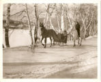 Sleigh Ride Winter Scene