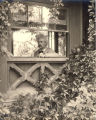 1903, Mark Twain in study window shot from outside2
