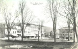 View of Main Street, Alfred, N.Y.