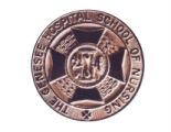 The Genesee Hospital School of Nursing pin