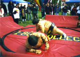 Sumo style wrestling at Student Club Festival, Queens College, New York, Accession 2005X-05