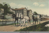 Along Erie Canal, Lyons, N. Y. [front caption] (1 front) [e0120ac1]