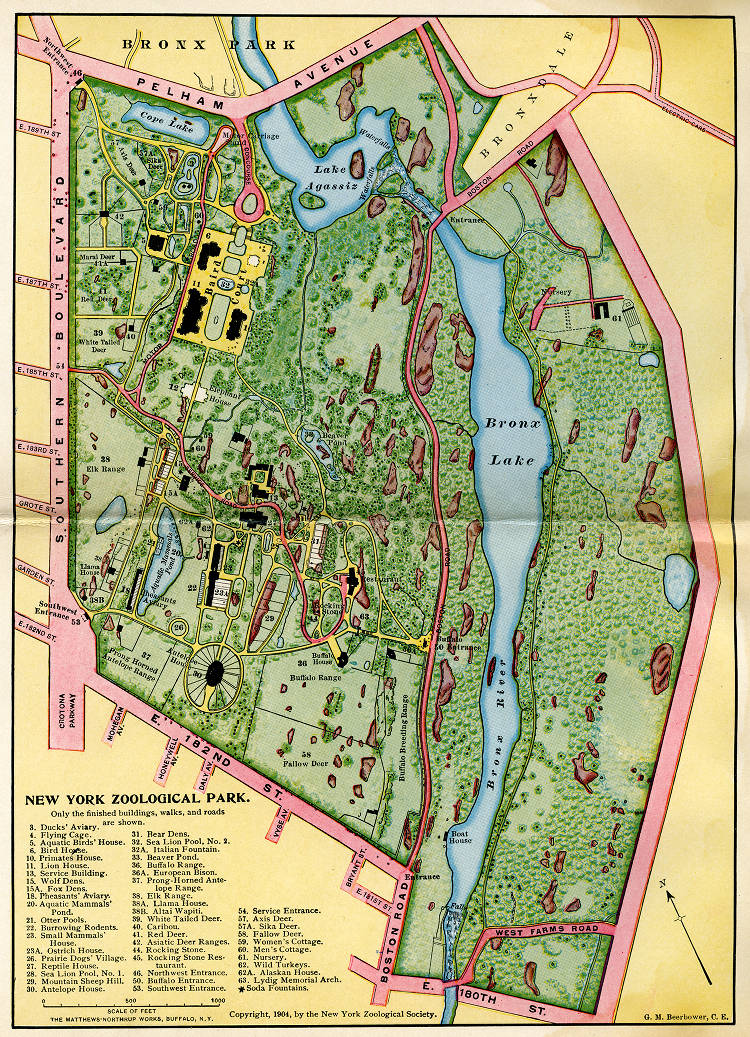 Map of the New York Zoological Park, as far as completed ... Map Bronx Zoo on ny aquarium map, south bronx map, brooklyn map, mta bronx bus route map, subway map, arthur avenue map, buffalo zoo ny map, prospect park map, american museum of natural history map, gun hill road map, zoo park map, wildlife safari map, arthur ave bronx ny map, bronx street map, woodlawn cemetery bronx map, manhattanhenge map, new york map, the bronx map, virginia zoological park map, central park map,